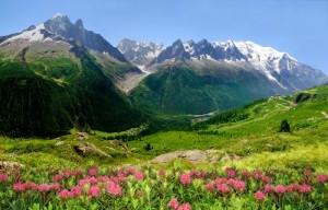 Die Sommerferien in den Alpen